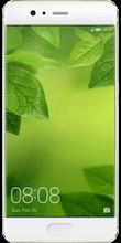 P10 green voorkant